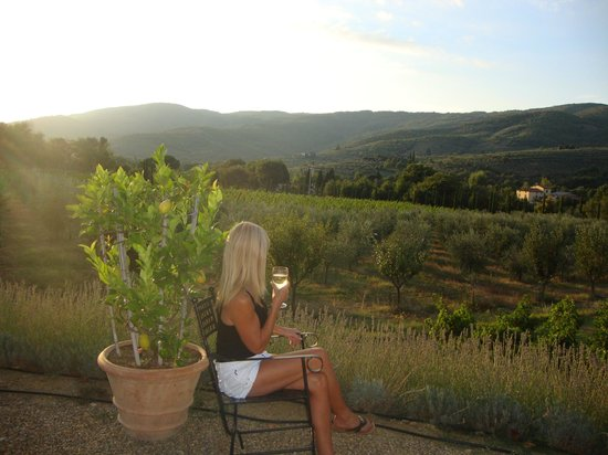 Castiglion Fiorentino, Italien:                                     The view of the vineyard