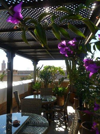 Riad Dixneuf La Ksour:                   Terrace