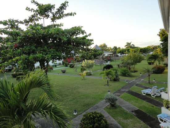 Coyaba Beach Resort:                   Gardens