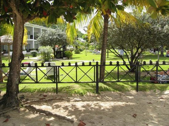 Coyaba Beach Resort:                   Gardens from the beach