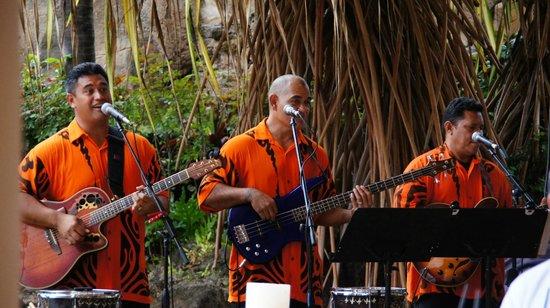 Wailele Polynesian Luau: Musicians