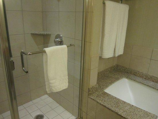 โรงแรมคอนราด ชิคาโก:                   Separate shower