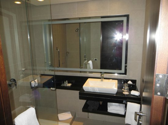 Hilton Garden Inn Santiago Airport: bathroom 2