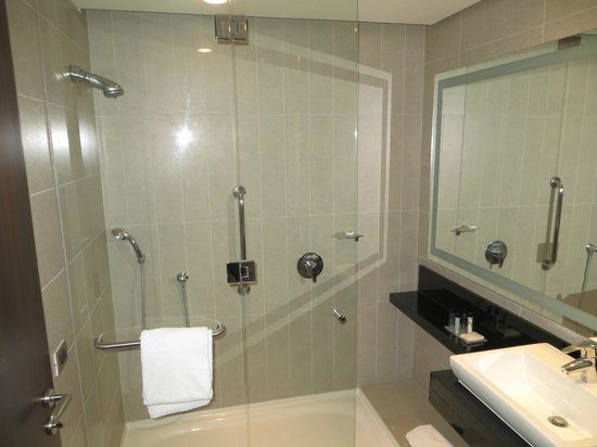 Hilton Garden Inn Santiago Airport: shower