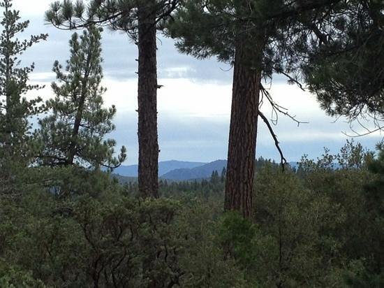 Idyllwild Nature Center:                   one of many views