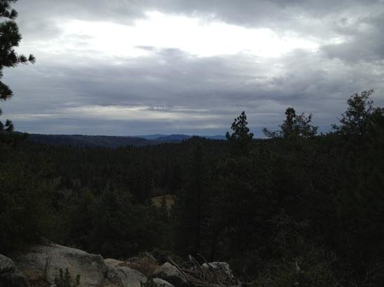 Idyllwild Nature Center:                   view