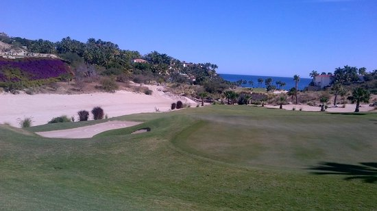 Palmilla Golf Club: Palmilla