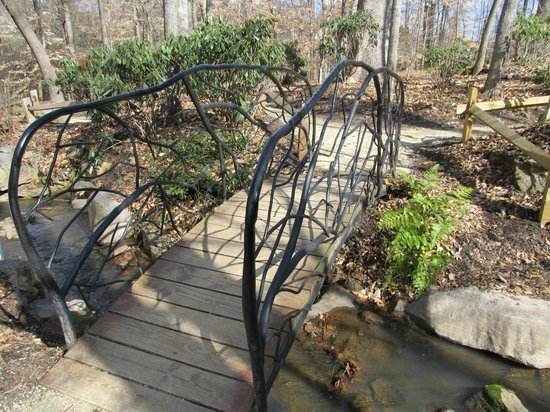 The Bog Garden at Benjamin Park : The bridge