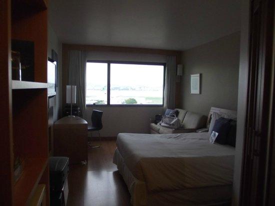 Hotel Novotel Rio De Janeiro Santos Dumont:                   Arejado