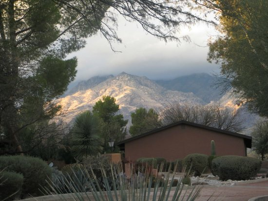 Canyon Ranch in Tucson:                   walking around the grounds