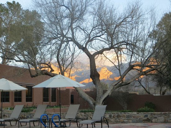 Canyon Ranch in Tucson:                   view from Double U Cafe
