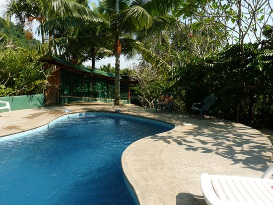 Liquid Magic Surf Resort:                   pool