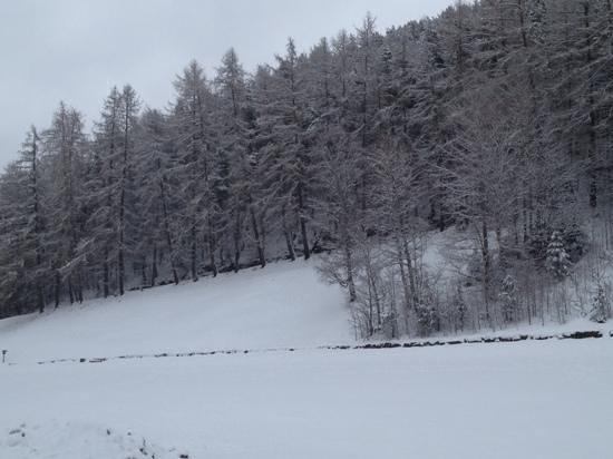 เนเจอร์โฮเต็ล วีเซอร์โฮฟ:                   Renon : monte di mezzo
