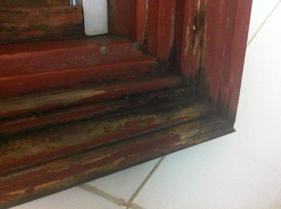 Los Tilos:                   Door frame falling off the night before it came off completely.