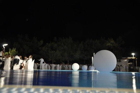 Club Med Bodrum Palmiye:                                     pool