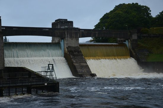 Rosehill Guest House: The dam