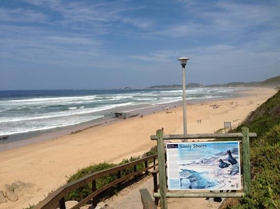 less than 5 minute walk from the brenton beach house