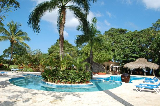 The Palace at Playa Grande:                   pool