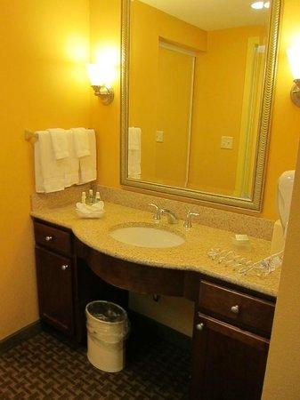 Homewood Suites Dover-Rockaway: Vanity