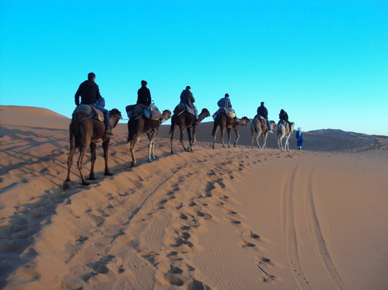 Camel Treks At Erg Chebbi With Sahara Desert Trips & Morocco Travels - Private Day Tours