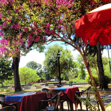 bike it:                                     El Tigre lunch spot
