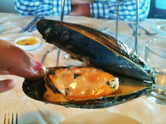 Cable Station Accommodation:                   mussels at the restaurant