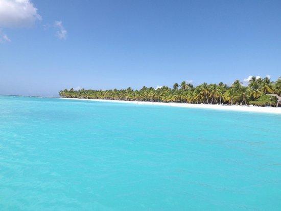Paradisus Punta Cana:                   punta cana beach