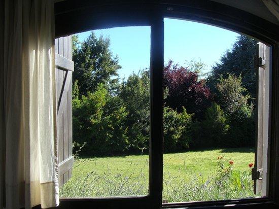 Hosteria del Prado:                   Desde mi ventana