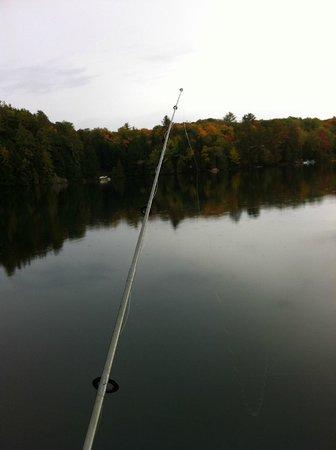 Sunny Point Resort, Cottages & Inn:                                     Fishing! :)