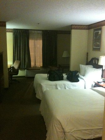 Quality Suites: View of the room from the door.