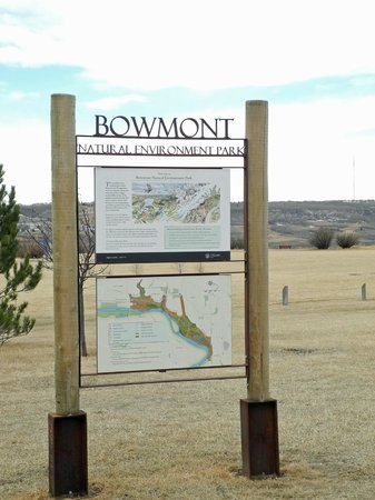 Bowmont Park
