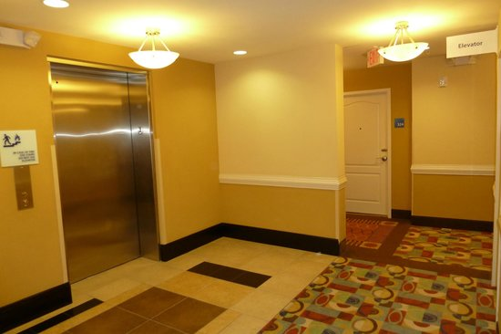 Holiday Inn Express Hotel & Suites Orlando - International Drive :                   elevators