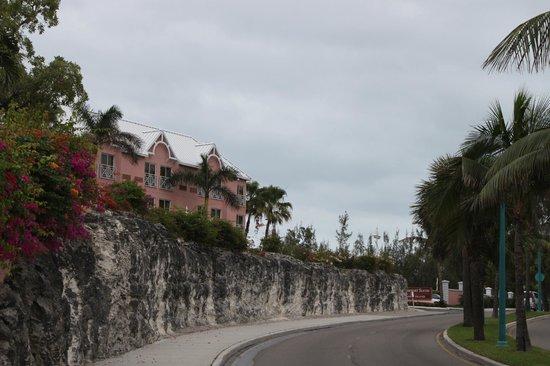 Comfort Suites Paradise Island:                   hotel