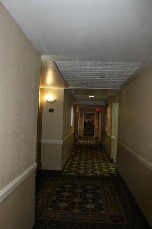 Comfort Suites Paradise Island:                   hallway
