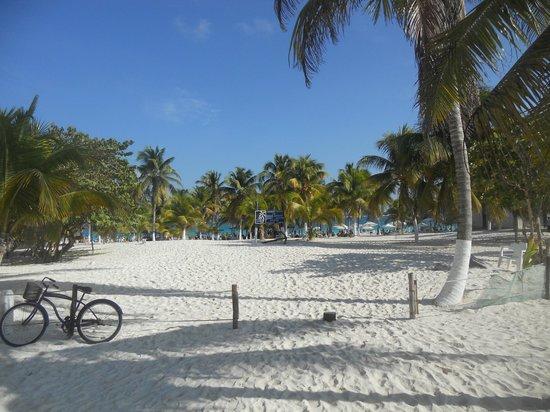 Heaven at the Hard Rock Hotel Riviera Maya:                                     Entrance to public beach