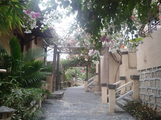 Rock Water Bay Beach Resort & Spa:                   Bougainville covered pathway to rooms