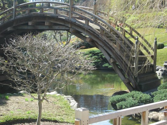 The Huntington Library, Art Collections And Botanical Gardens: Bridge Over Koi  Pond In Japanese