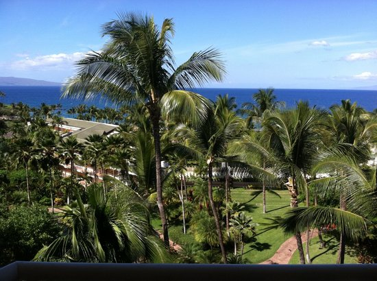 Grand Wailea - A Waldorf Astoria Resort:                                     View from guest room
