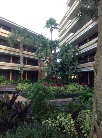 Rosen Inn at Pointe Orlando:                                     garden area outside building e and f