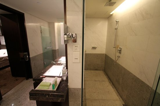 The Westin Beijing Chaoyang: Big-big shower