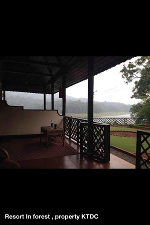 KTDC Lake Palace Thekkady:                                     view from room