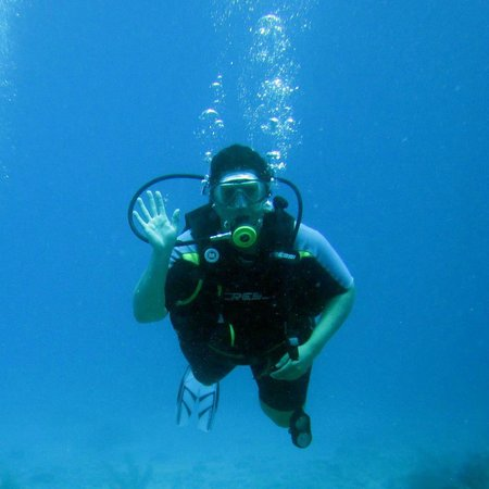 Akumal Dive:                   Hola from the deep blue sea! (Well, 40 or so feet probably!) Open Water Diver