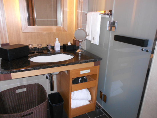 庭のホテル 東京,                   右のドアはトイレ