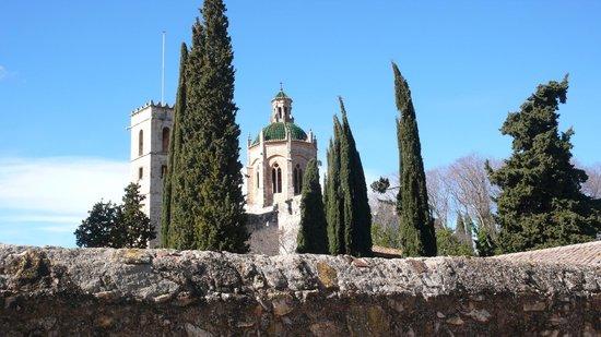 Monasterio de Santes Creus:                   entre los cipreses