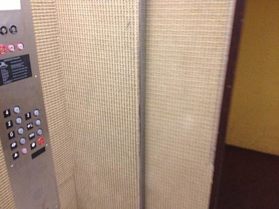 Oasis Inn:                                     The elevator is wall to wall carpet… uhhhh ok?