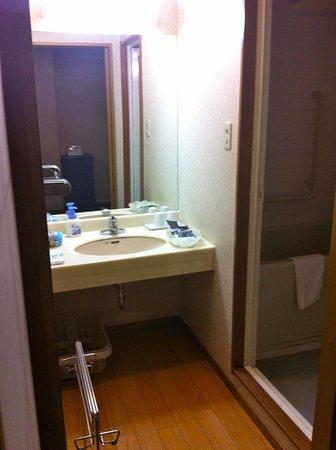 Hotel Sanoya: Wash basin
