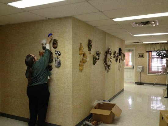 Shenandoah Showcase - Art at the Strasburg Town Hall: Liz Holingsworth hanging her work for the Feb 2013 show