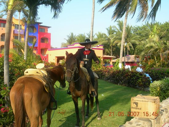Royal Decameron Complex: Wonderful horse back riding available.