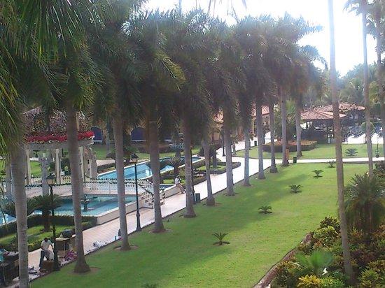 ClubHotel RIU Jalisco:                   lindo jardin                 