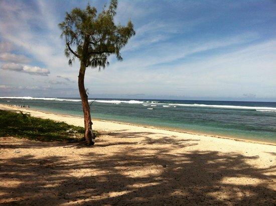 Hotel Le Recif:                   le lagon et la plage
